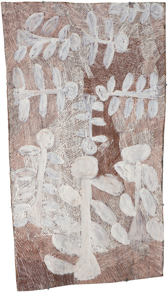 Nyapanyapa Yunupingu Dharpa, 2016; 4894Y; Bark painting; 102 x 63 cm; enquire