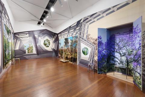 Exhibition: Gary Carsley 'ARBOUR ARDOUR'