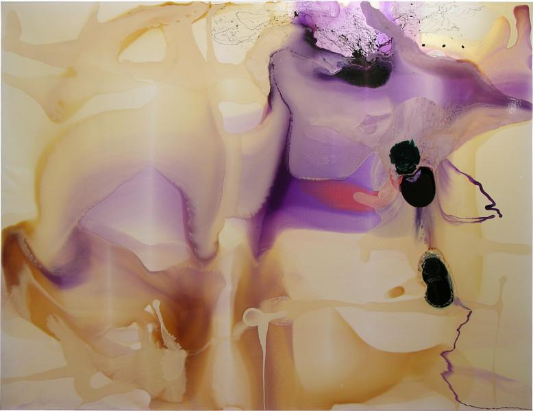 Dale Frank Gardener's Bay Nicholl's Rivulet Talune Wildlife Park and Koala Gardens, 2005; varnish on acrylic on canvas; 200 x 260 cm; enquire