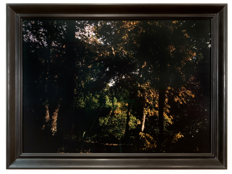 Bill Henson Untitled, 2007; CL SH596 N20; type C photograph; 124 x 174.5 cm; (image size); Edition of 5; enquire