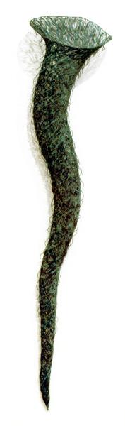 Bronwyn Oliver Eddy, 1993; copper; 190 x 40 x 40 cm; enquire