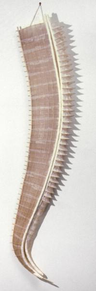 Bronwyn Oliver Flotilla, 1987; paper, fibreglass resin, cane; 213 x 46 x 30 cm; enquire