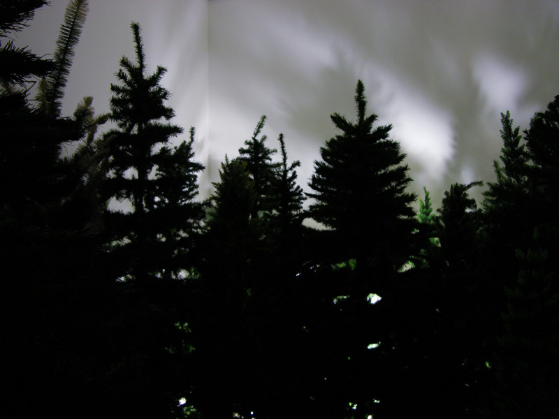 Pep Prodromou The Seance, 2004-05; artificial Christmas trees and lights; installation, dimensions variable; enquire