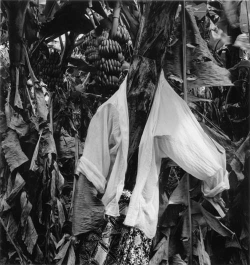 Simryn Gill #3, 1999; from the series Rampant; black and white prints on fibre paper, selenium toned; 22.5 x 25.5 cm; Edition of 10; Edition of 9 + AP 2; enquire