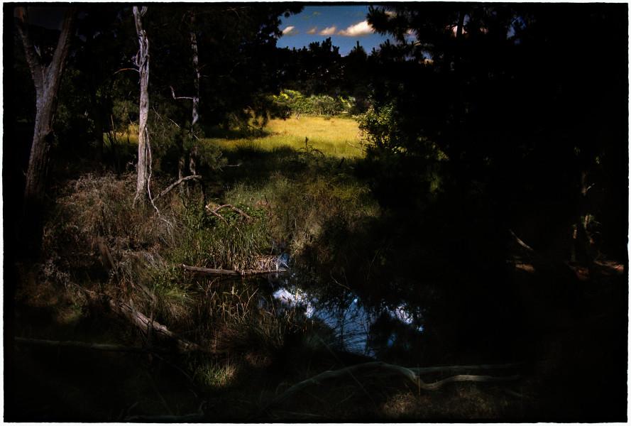 Bill Henson Untitled, 2018-19; CL GW  SH3 N6B; archival inkjet pigment print; 127 x 180 cm; edition of 5 + 2 AP; enquire
