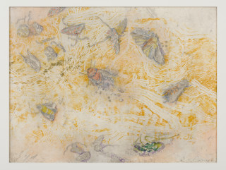 John Wolseley Windblown insects on the salt – Lake Tyrrell (for JC), 2018; etching chine-colle over watercolour; 35.5 x 47.5 cm; Edition of 10; enquire