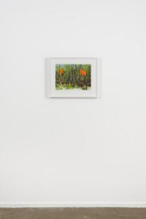 installation view; Callum Morton Fin, 2020; pencil on paper; 45.5 x 56 cm; enquire