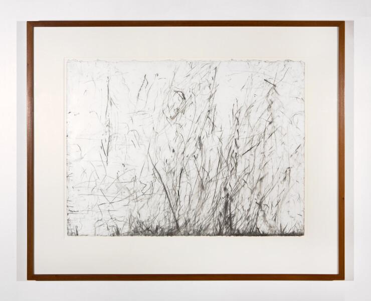 John Wolseley Burnt Scrub Trace No. II Gahnia sedge, 2002; carbonised wood on paper; 57 x 77 cm; enquire