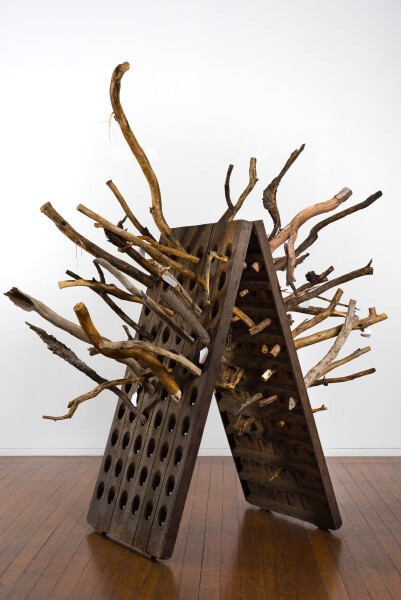 John Wolseley Echidna Riddler, 2019; French oak champagne riddler with 30 beetle engraved branches (blackwood, redgum, grey box, yellow gum); two hinged panels at 149.5 x 72 x 5cm each; installation dimensions variable; Enquire