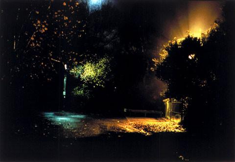 Bill Henson Untitled #74, 1998; CL SH 237 N17; Type C photograph; 104 x 154 cm; 127 x 180 cm (paper size); Edition of 5 + AP 2; enquire