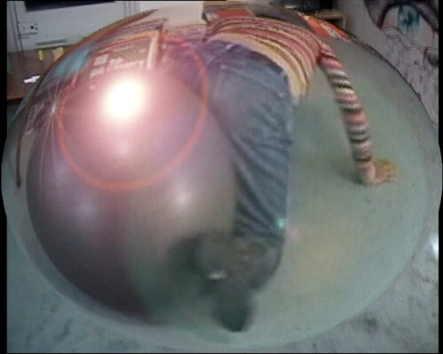 Hany Armanious Dung Beetle realigning the planets (still), 2003; DVD; 2 minutes, 39 seconds; Edition of 5; enquire