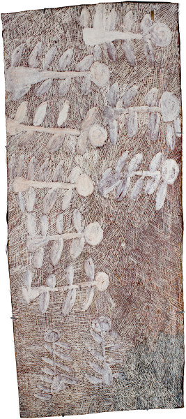 Nyapanyapa Yunupingu Dharpa, 2016; 4986Z; natural earth pigments on bark; 138 x 59 cm; enquire