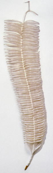 Bronwyn Oliver Quill, 1987; paper, fibreglass resin, cane; 213 x 46 x 15 cm; enquire