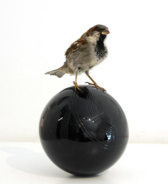 Michael Parekowhai Cock on Ball, 2007; sparrow, lawn bowl, automotive paint; 21 x 13 x 12 cm; enquire