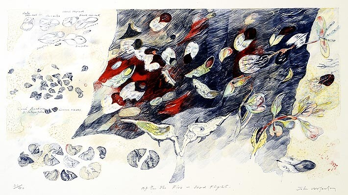 John Wolseley After the fire - Seed Flight, 2004; Lithograph printed in colour from five stones/plates on white Velin Arches paper 250gsm; 56 x 76 cm; paper size; 32 x 60cm (image size); Edition of 40 + AP 4; enquire