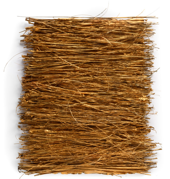 Kirtika Kain offerings, 2019; coconut broom grass, gold pigment, wax; 52 x 44 cm; Enquire