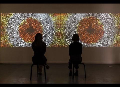 Daniel Boyd in 'Experimenta Life Form: International Triennial of Media Art'