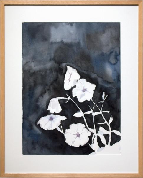 Glenn Sorensen Petunia, 2011; watercolour on paper; 49.5 x 40.5 cm; enquire