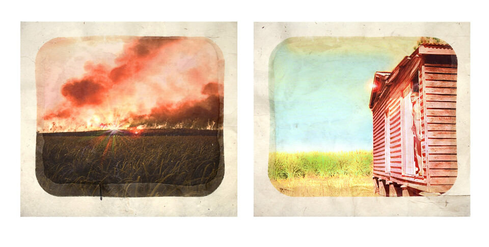 Tracey Moffatt Plantation (Diptych No. 9), 2009; digital print with archival pigments, InkAid, watercolour paint and archival glue on handmade Chautara Lokta paper; 46 x 50.5 cm (each); Edition of 12 + AP 2; enquire
