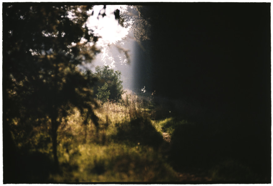 Bill Henson Untitled #4, 2005-06; CL SH529 N12A; type C photograph; 127 x 180 cm; Edition of 5 + AP 2; enquire