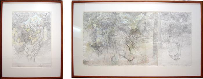 John Wolseley Green Mountain, leaf, lacewing, 2000; graphite & watercolour on paper; two panels: 56 x 111cm; 56 x 41cm; enquire