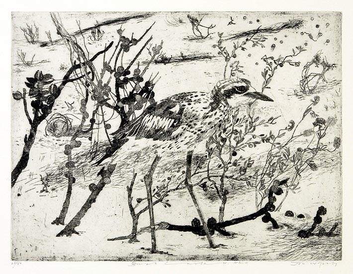 John Wolseley Bush Curlew, 2004; etching