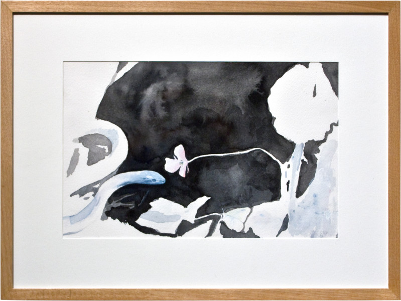 Glenn Sorensen Blue Snake, 2011; watercolour on paper; 31 x 41 cm; enquire