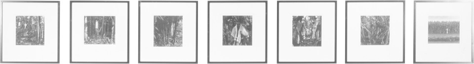 Simryn Gill Rampant, 1999; black and white photographs; 26.67 x 29.21 cm; Edition of 10; enquire