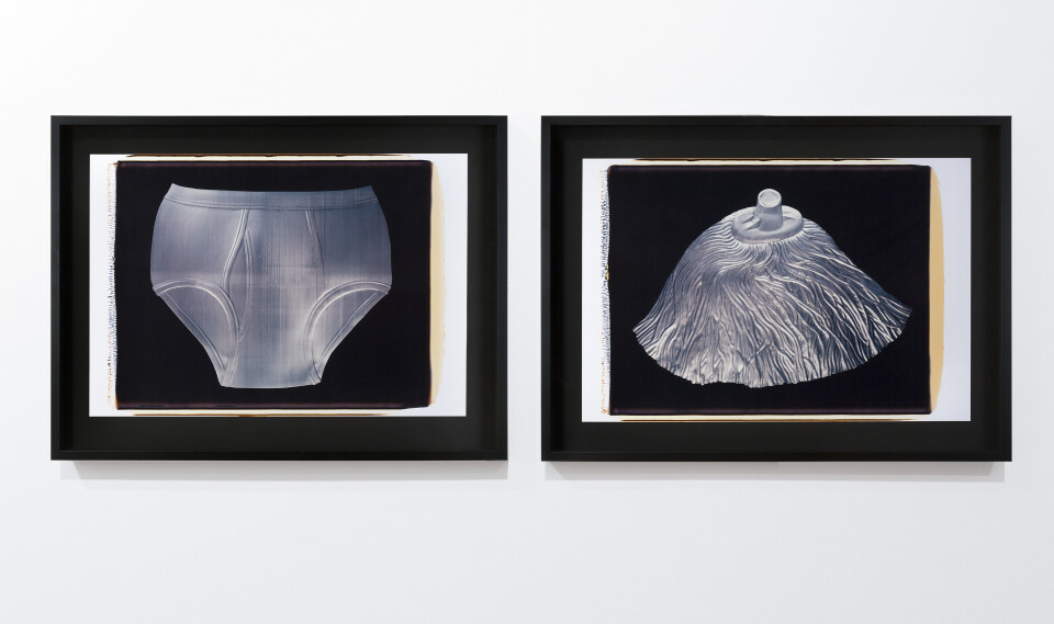 Fiona Hall Untitled, 1994; polaroid photographs; 53 x 68 cm; each (image size), diptych; enquire