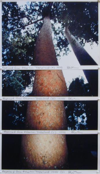 Destiny Deacon Postcard from Atherton Tablelands (A) (B) (C) (D), 1998; 4 colour laser prints; 52 x 29.8 cm; Edition of 15; enquire