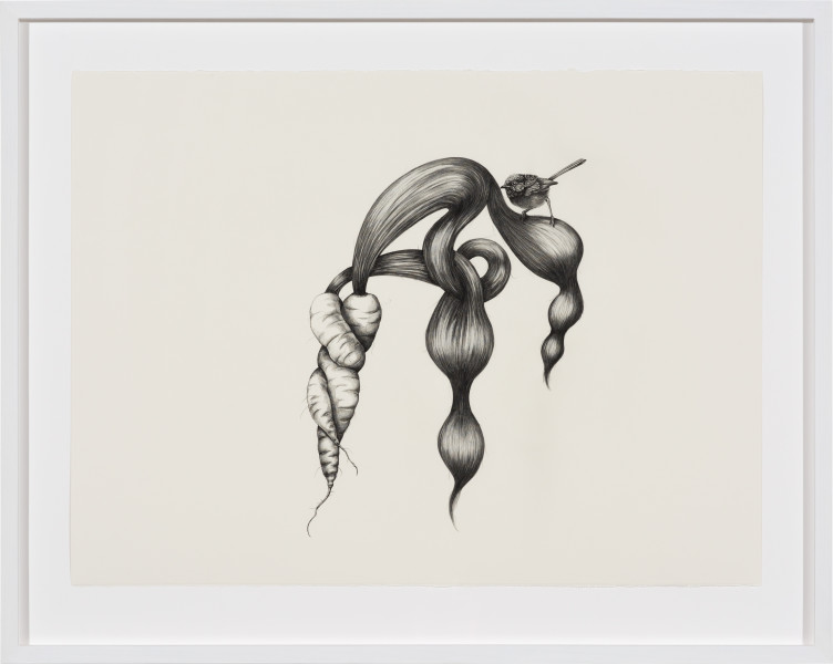 Patricia Piccinini Inseparable (Fairy Wren), 2020; graphite on paper; 57 x 76 cm; 72.5 x 91 cm (framed); enquire