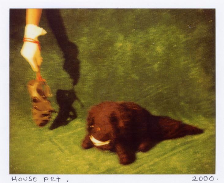 Destiny Deacon House pet, 2000-03; lambda print from Polaroid original; 80 x 100 cm; Edition of 15; enquire
