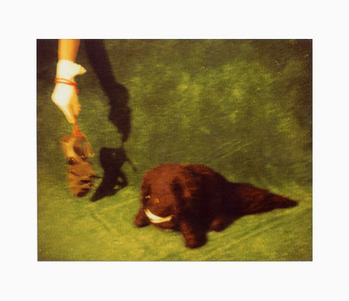 Destiny Deacon House pet, 2000-03; lambda print from Polaroid original; 80 x 100 cm; Edition of 15; enquire
