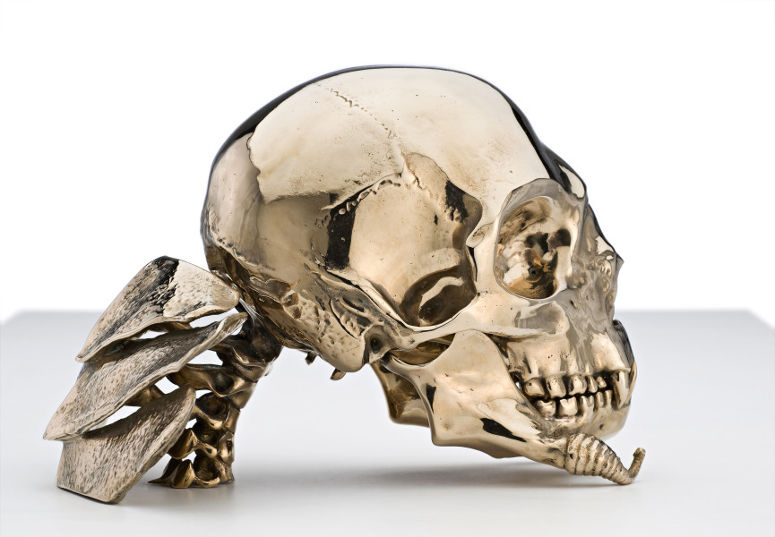 Patricia Piccinini Not Quite Animal II (Transgenic Skull for the Bodyguard), 2008; bronze; 28 x 14.5 x 19.5 cm; Edition of 6 + AP 2; enquire