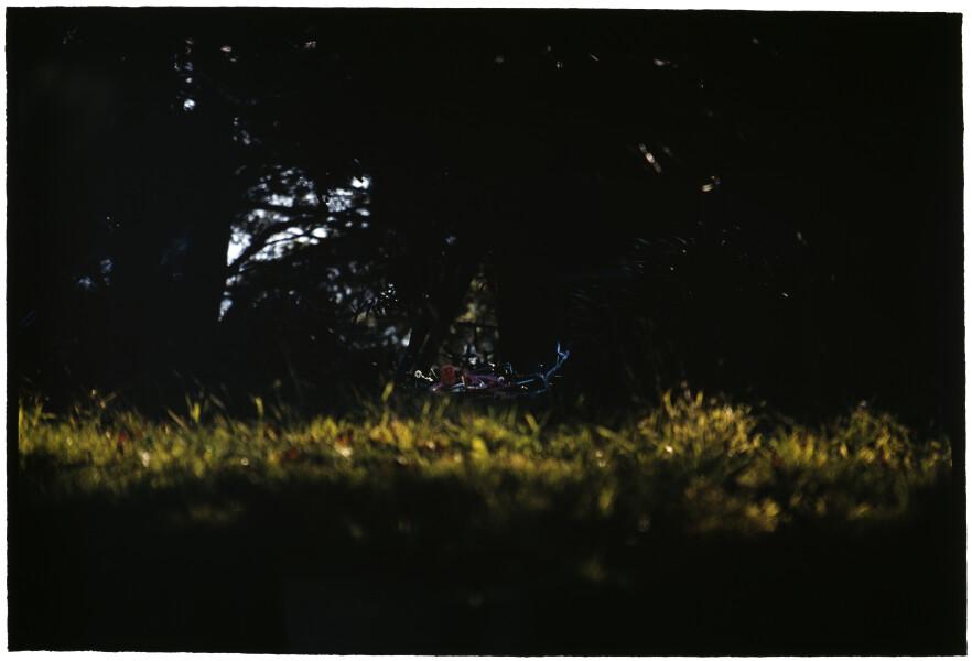 Bill Henson Untitled #18, 2005-06; CL SH482 N2; type C photograph; 127 x 180 cm; Edition of 5 + AP 2; enquire