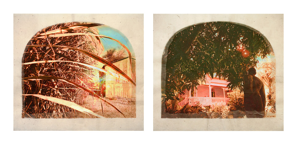 Tracey Moffatt Plantation (Diptych No. 6), 2009; digital print with archival pigments, InkAid, watercolour paint and archival glue on handmade Chautara Lokta paper; 46 x 50.5 cm (each); Edition of 12 + AP 2; enquire