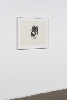 installation view; Patricia Piccinini Inseparable (Welcome Swallow), 2020; graphite on paper; 57 x 76 cm; 72.5 x 91 cm (framed); enquire