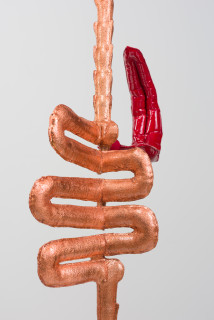Caroline Rothwell Biomorph (Pipes) (detail), 2018; copper, Hydrostone, canvas, epoxyglass, vinyl paint, stainless steel, wood; 108 x 40 x 20 cm; Enquire