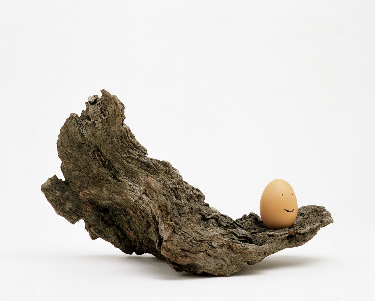 Nell Lookout, 2004; egg, marker, wood; 20 x 31.5 x 20.5 cm; enquire