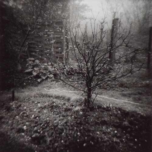 Fiona Hall Pett Level, England, 1978; gelatine silver photograph; 28 x 28 cm; enquire