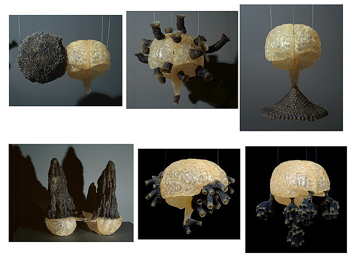 Fiona Hall Group of 6 #2 (termite nest 2, mud wasp nest 6, paper wasp nest 4, termite nest 1, mud wasp nest 5, paper  wasp nest 3), 2007-08; polymer resin dimensions variable; Edition of 2; enquire