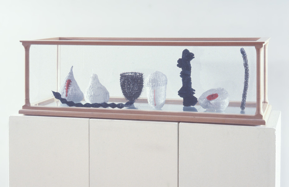 Fiona Hall Occupied Territory, 1995; glass beads, wire, nails, tooth, glass, wood; 39 x 129 x 43 cm; enquire